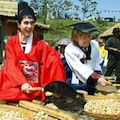 Thumbnail image for Sancheong 2012 herbal medicine festival in the news