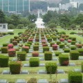 Thumbnail for post: 2015 Travel Diary day 5: The UN Memorial Cemetery and the start of the MERS scare