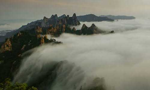 Featured image for post: South Korea: Earth's Hidden Wilderness – BBC2 documentary