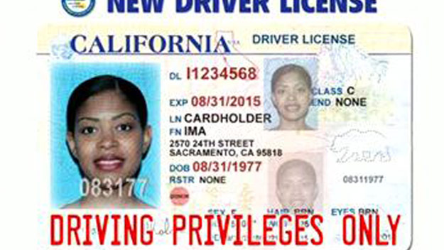 2013 North 2013 Carolina North Drivers License Carolina License Drivers