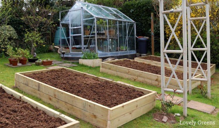 Best Wood Vegetable Garden