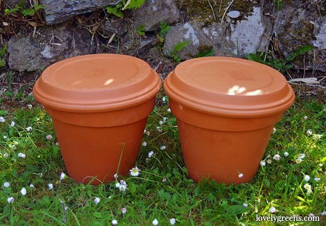 Terracotta Plant Saucers