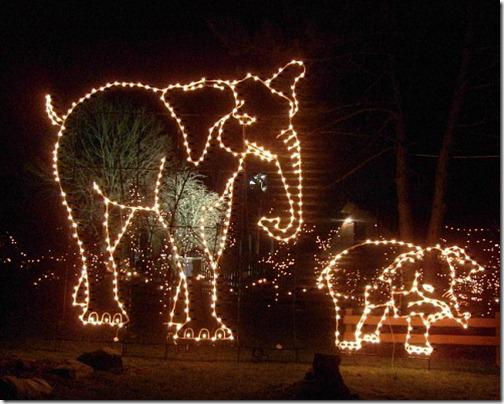 Turtle Back Zoo Christmas Lights