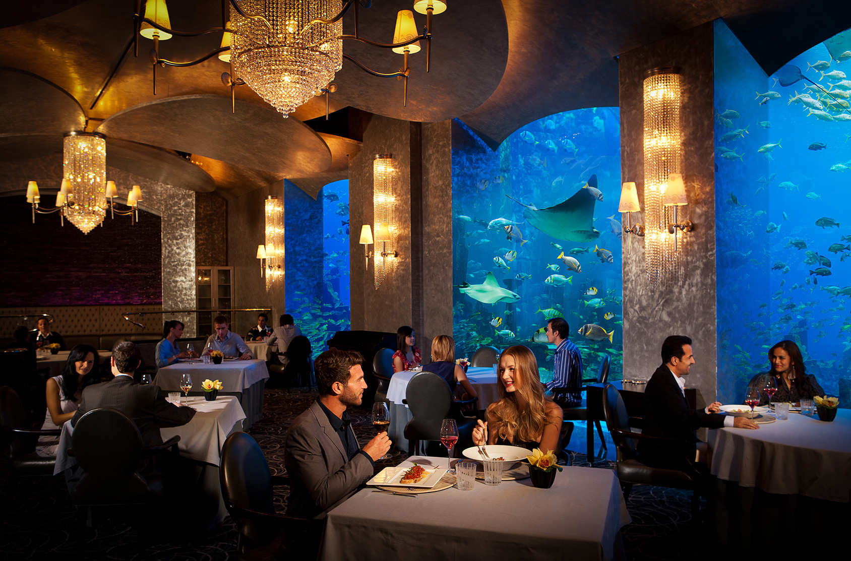 Best Restaurants San Francisco Seafood