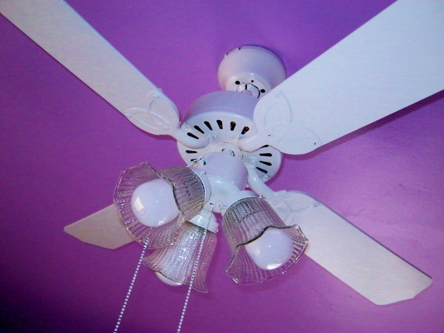 How To Paint A Ceiling Fan Without Taking It Down Lynda