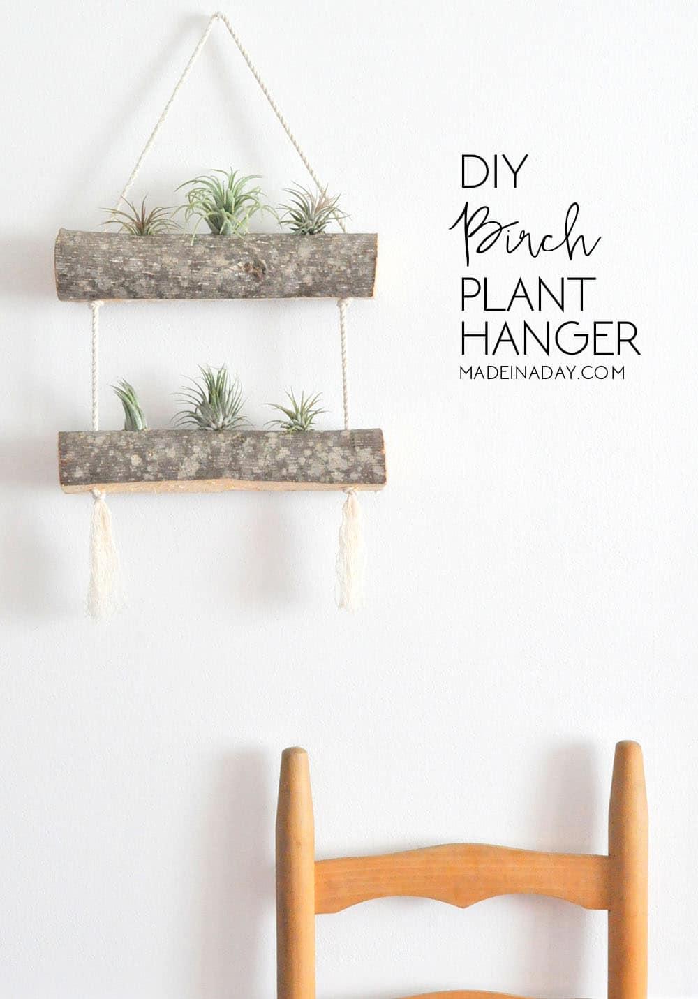 Diy Holder Wall Plant