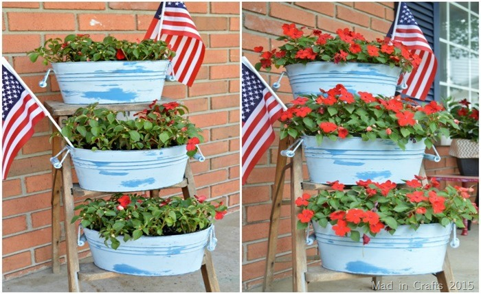 Impatiens Before and After