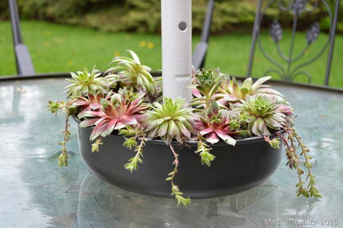 succulent patio table planter