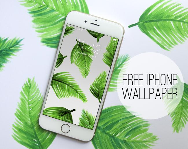 tropical-iphone-blog