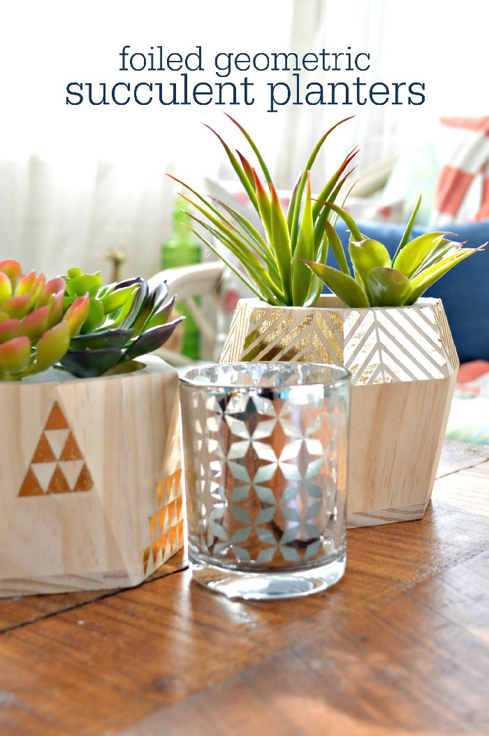 succulents in foiled geometric planters on a table in a sunny room