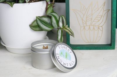 unlit candle on a shelf with plants