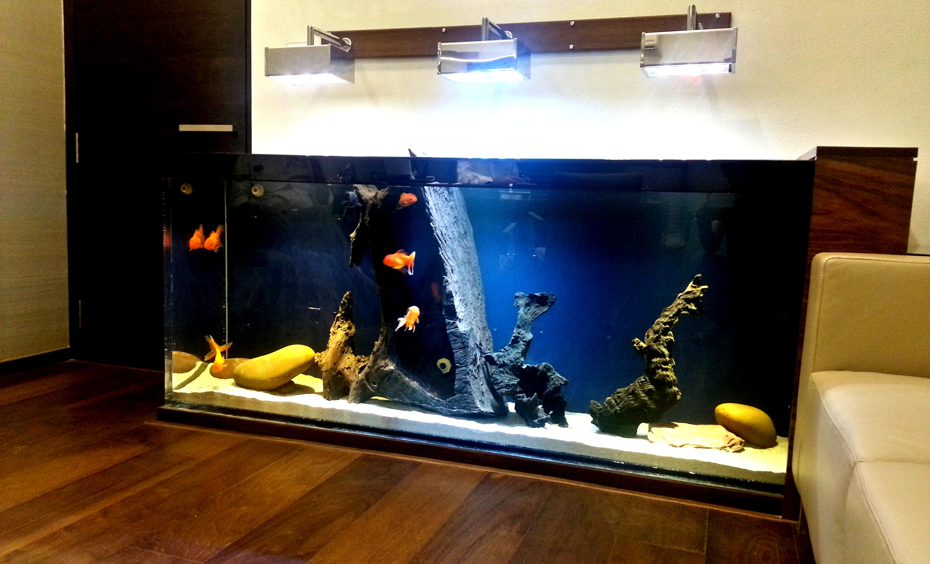 Led Freshwater Aquarium Lighting