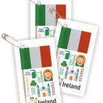 Ireland Thinking Day Toothpick Flag SWAPs