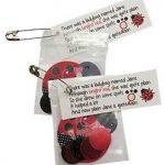 Girl Scout Ladybug SWAP Kit