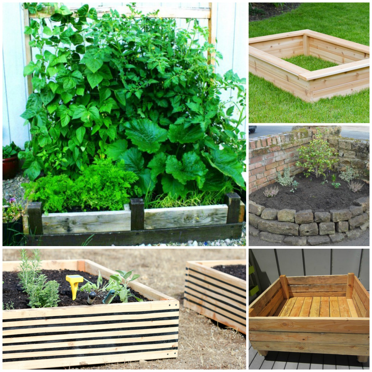 Simple Vegetable Garden Box