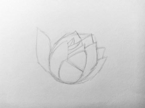 Como desenhar uma flor com um lápis? Lição faseada. Passo 4. Lápis de retratos - fenlin.ru