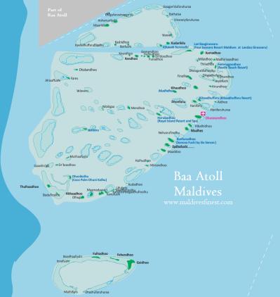 Gaafu Dhaalu Atoll | Dog Breeds Picture
