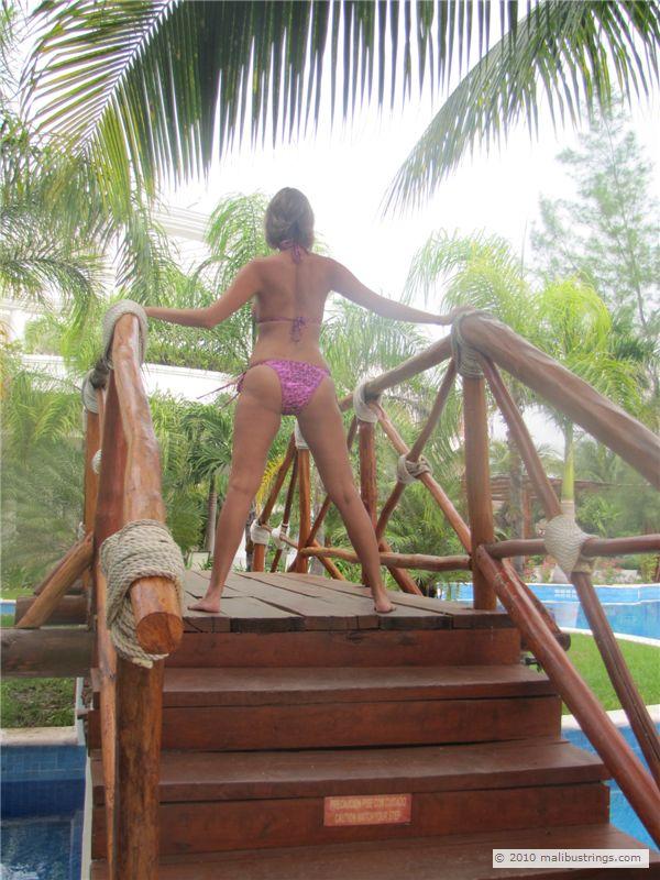 Malibustrings Com Bikini Competition Rachel T Gallery 1