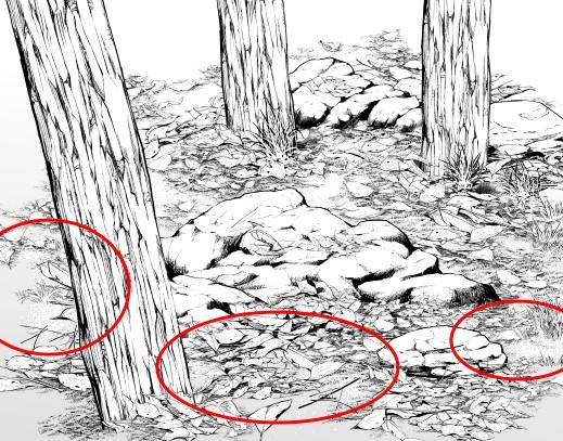 Fallen Leaves Ground
