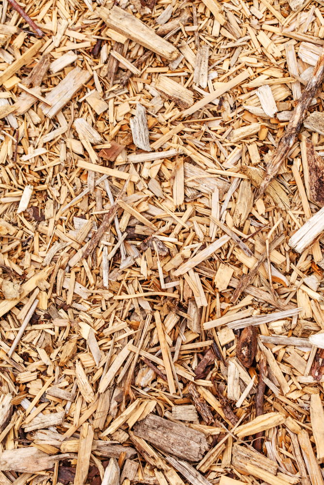 Mulching Leaves Good Your Lawn