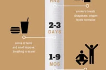 Customize 39  Timeline Infographic templates online   Canva Quit Smoking Timeline Infographic