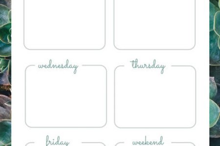 Customize 181  Weekly Schedule Planner templates online   Canva Green Succulents Weekly Schedule Planner