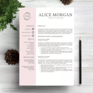 Professional Resume Template     only  9   Master Bundles
