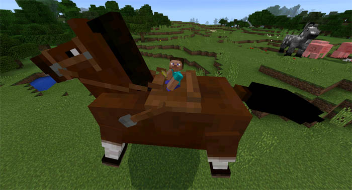 Minecraft Chickens You How Do Feed