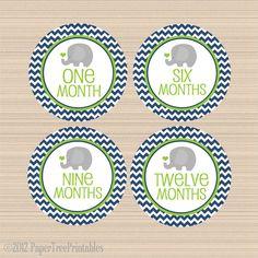 Baby Gambol On Pinterest Gray Chevron Elephant Nursery
