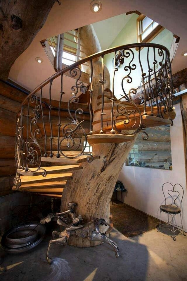 Tree Stairs Stairs Pinterest | Spiral Staircase Tree Trunk