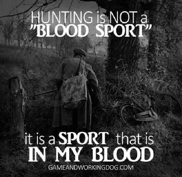 Redneck Hunting Quotes Quotesgram