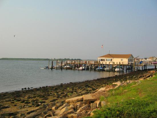 Cape May Wildwood Restaurants