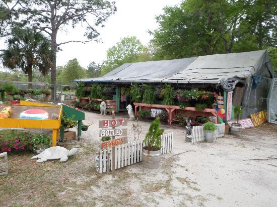 Local Restaurants My Location