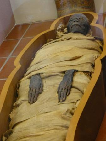 A Real Mummy With Dyed Hair She Was Blond With A Cloth