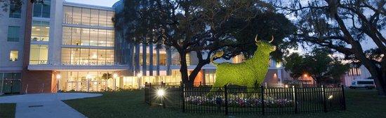 University Of South Florida Botanical Gardens Tampa