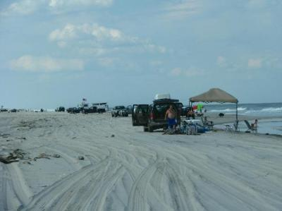 Driving on... - Picture of Island Beach State Park, New ...