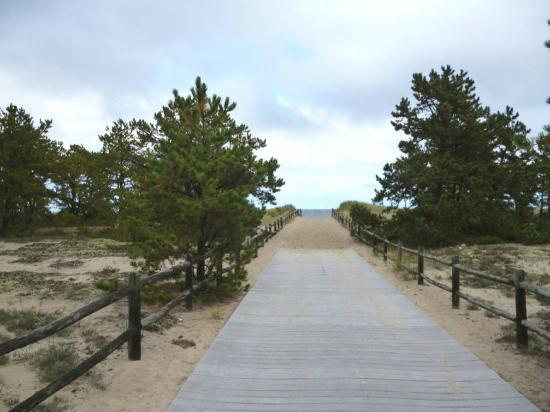 Ferry Beach State Park Saco 2020 All You Need To Know