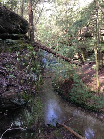 Sipsey Wilderness Alabama United States Forest Reviews Tripadvisor