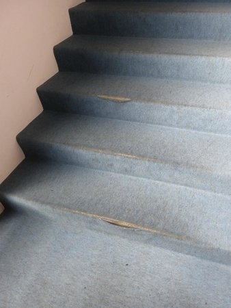 Example Of Worn Out Stair Carpet Picture Of Laerdal Hotel   Blue Carpet On Stairs   Wooden   Grey Stair White Wall   Antelope   Geometric   Gray