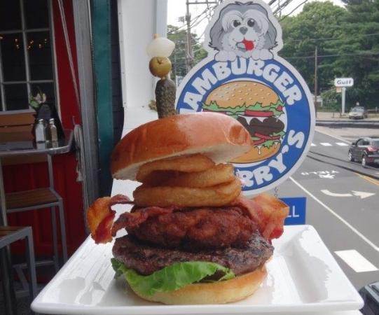 Lunch At Hamburger Harry S Review Of Hamburger Harrys