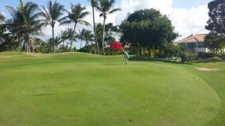 Green   Picture of Cocotal Golf   Country Club  Punta Cana   TripAdvisor Cocotal Golf   Country Club  Green
