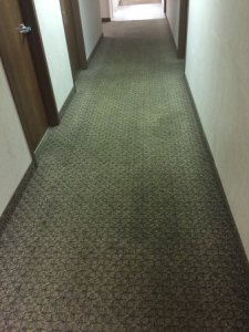 Spiders  Nasty carpet  Roaches  and cheap mattresses     Picture of     Baymont by Wyndham Rockford  Spiders  Nasty carpet  Roaches  and cheap  mattresses