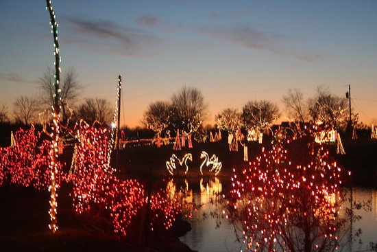 Zoo Lights Review