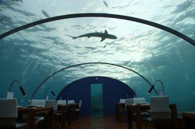 Ithaa Undersea Restaurant - Picture of Conrad Maldives ...