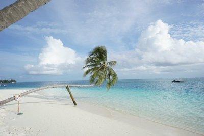 photo5.jpg - Picture of Conrad Maldives Rangali Island ...