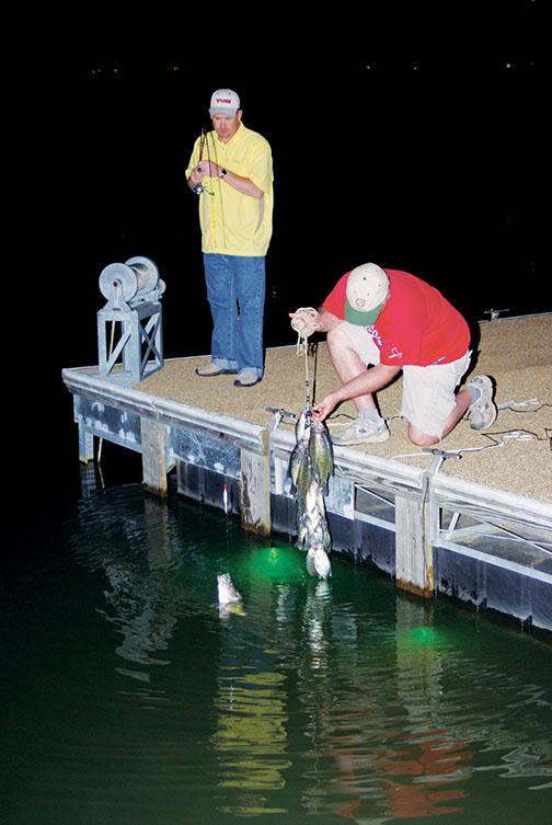 Led Fishing Lights Boats