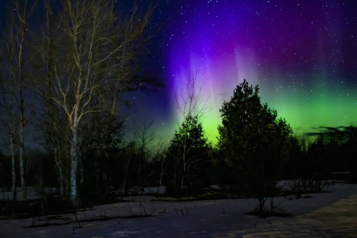 Northern Lights July Iceland