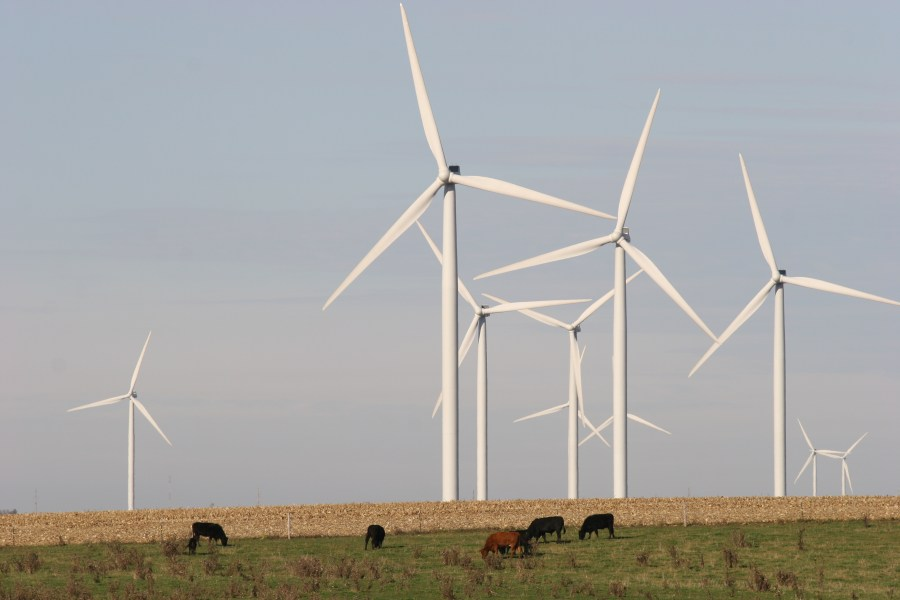 Wind Power Gains Momentum as a Viable Energy Alternative     Download HiRes