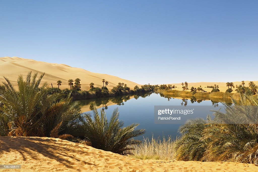 Free desert oasis Images, Pictures, and Royalty-Free Stock ...