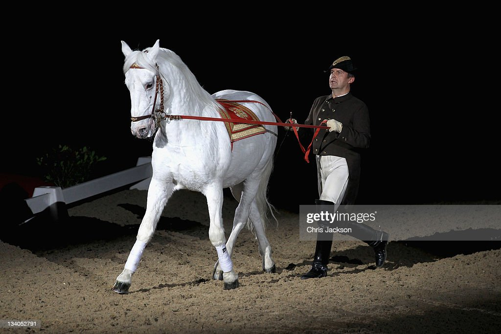 Vienna Lipizzaner Horses